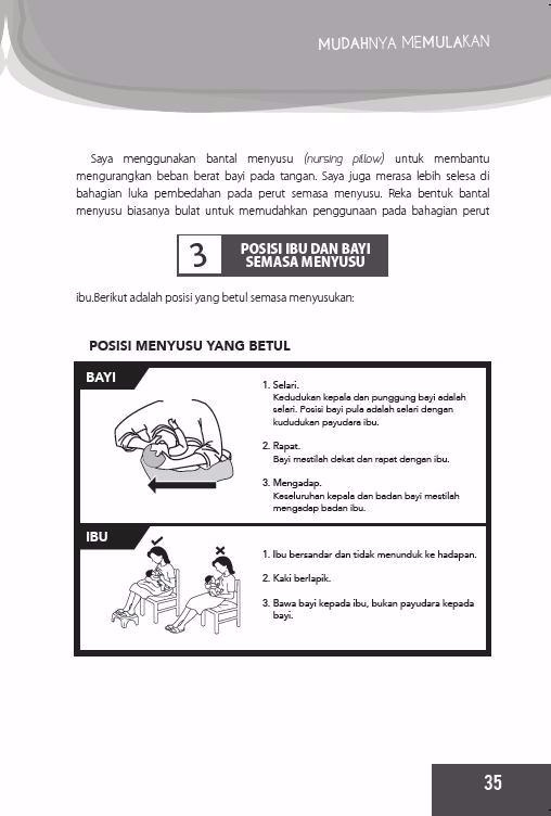 Penyusuan Susu Ibu (Breastfeeding book)